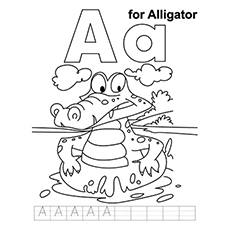 The-Alligator
