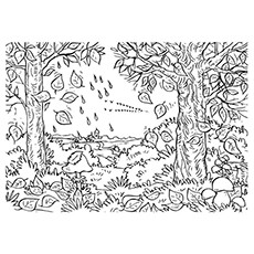 Beautiful Autumn Fall Coloring Pages for Kids