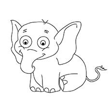 The-Baby-Elephant-16