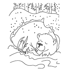Bear Hibernating Coloring Sheet
