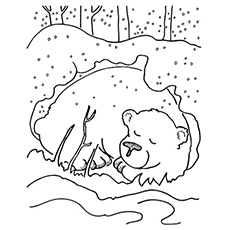 Sleeping Bear Coloring Sheet Coloring Pages