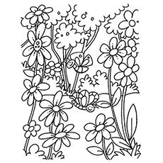 Superior The Blooming Flowers Coloring Pages