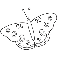 Coloring Pages of Beautiful Buckeye Butterfly
