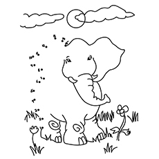 The-Connect-The-Dots-Elephants-16