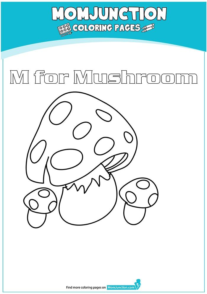The-Cook-Me-Mushrooms-16