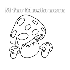 The-Cook-Me-Mushrooms--16