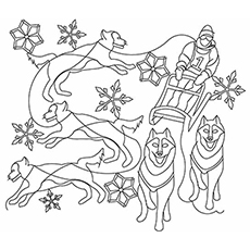 christmas season during winter dog sled coloring page