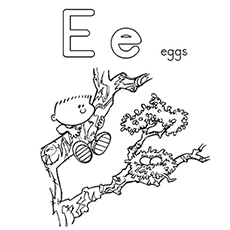 The-E-For-Egg-Nest