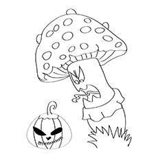 The-Fairy-Tale-Mushrooms-16