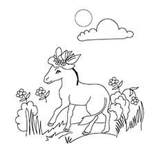 The Female Donkey Coloring images
