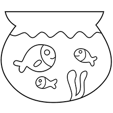 The-Fish-Bowl