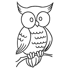 Halloween Owl Printable Coloring Page