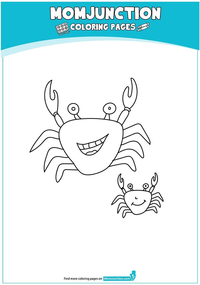 The-Happy-Crabs-16