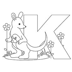 The K For Kangaroo