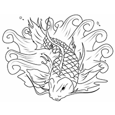 The-Koi-Fish