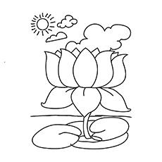 The-Lotus-16