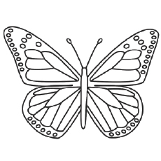 Beautiful Monarch Butterfly Coloring Pages