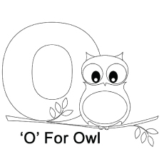 The-O-For-Owl