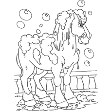 Phillipe Horse Bathing Picture to Color