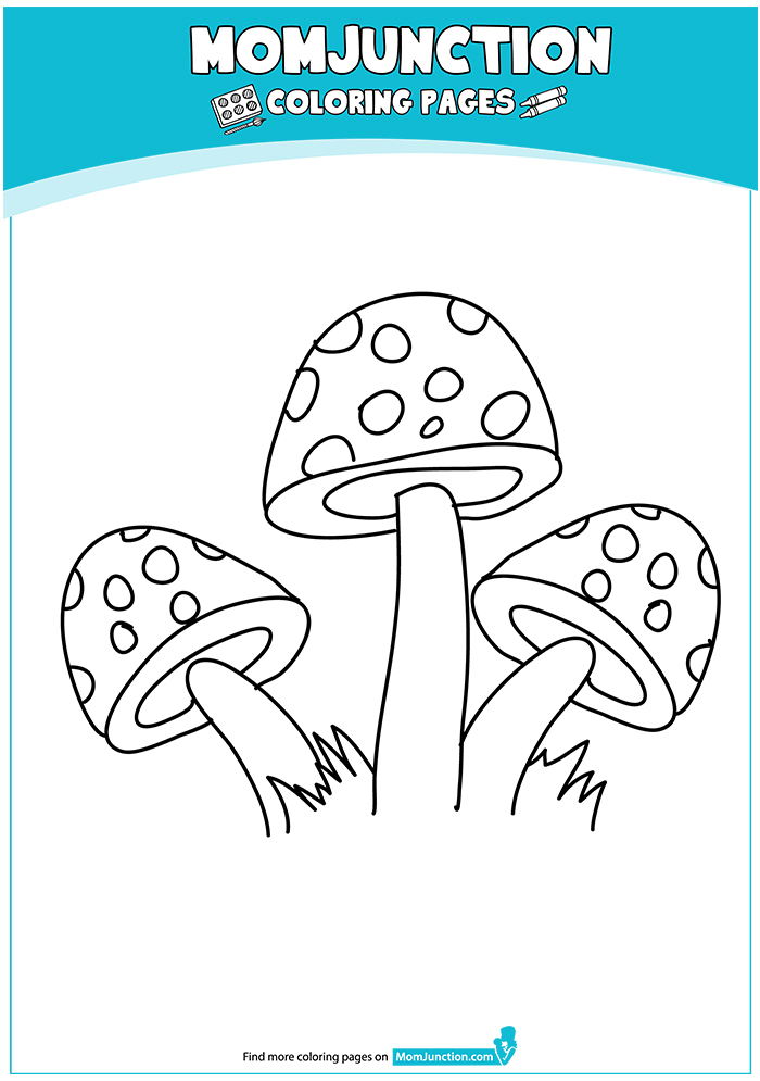 The-Polka-Dotted-Mushrooms-16