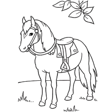 Samson Horse In Garden Worksheets for Kids to Color