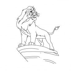 The Simba