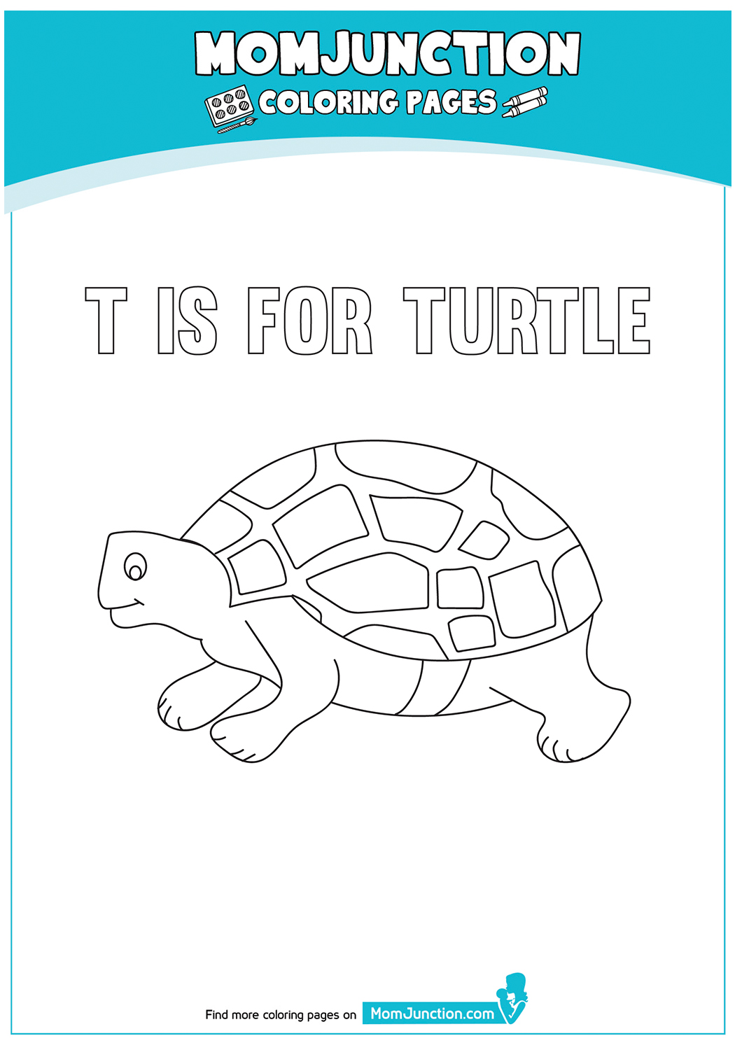 The-T-For-Turtle-17