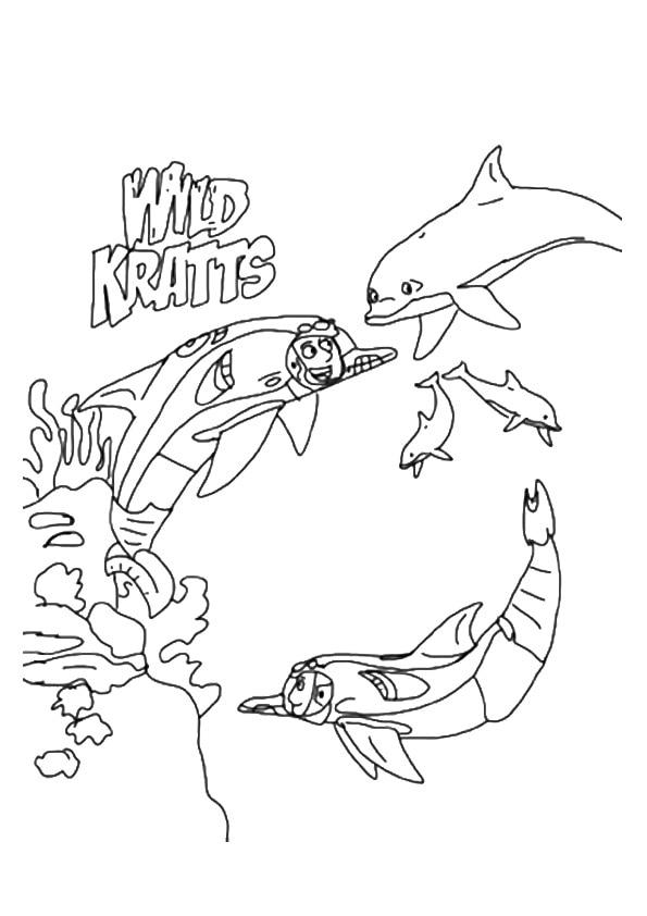 The-Wild-Kratts-In-Underwater-Expedition