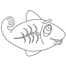 The-X-Ray-Fish
