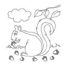 squirrel with acorn during fall season coloring pages