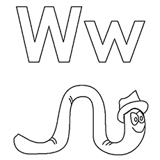 The-w-for-worm