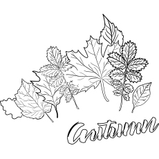 photo about Autumn Printable identified as Final 35 Totally free Printable Tumble Coloring Webpages On the web