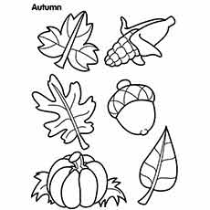 Autumn Seasonal Fruits Coloring Sheet
