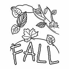 Fall Worksheets for Kids to Color Free