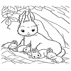 small bunny coloring pages - photo#35