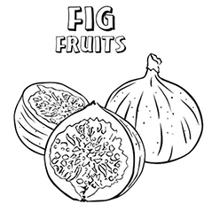 Free Printable Letter F for Figs Fruits Coloring Pages
