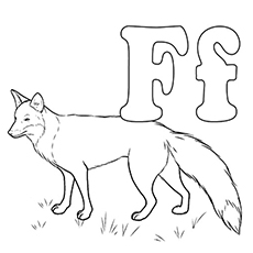 Coloring Pages of Letter F Stands For Fox