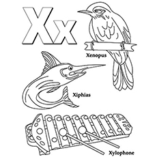Top 10 Free Printable Letter X Coloring Pages line