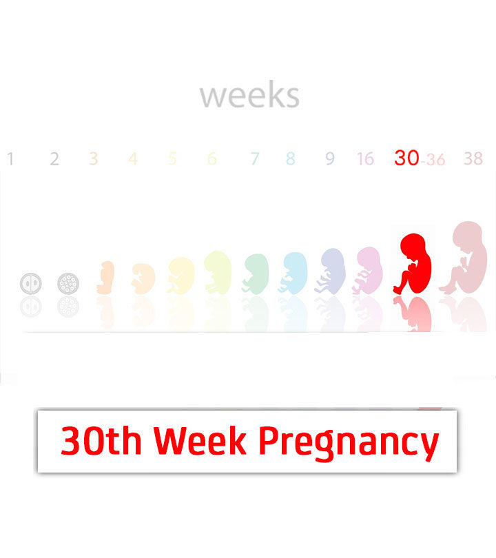 30th Week Pregnancy