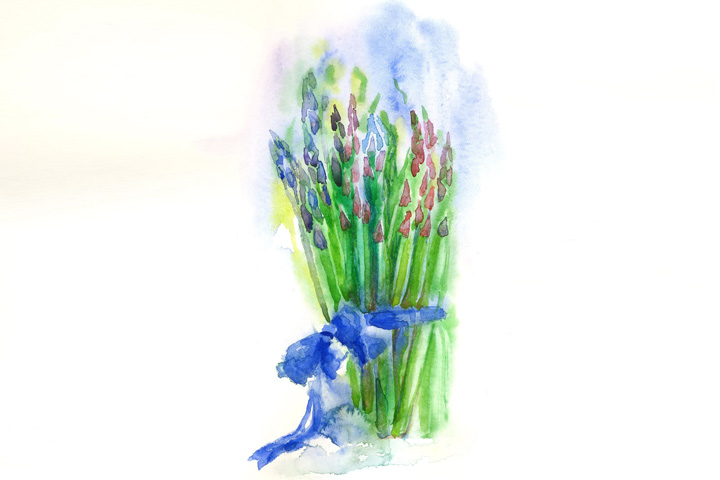 Asparagus Paint Brush