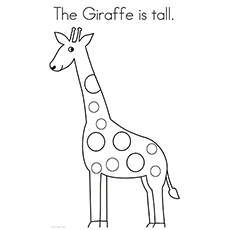 Giraffe Is Tall Coloring Pages Free