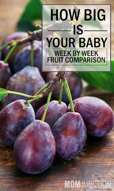 How Big Is Your Baby Week By Week Fruit Comparison