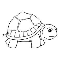 Small Turtle Coloring Page