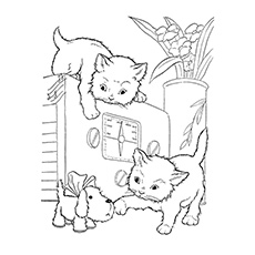 Coloring Sheet Cats Are Playing With Small Puppy Pictures Of