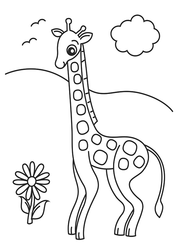 The-Giraffe-And-Flower