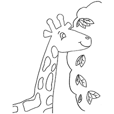 Free Printable Coloring page of Giraffe Eating Leaves