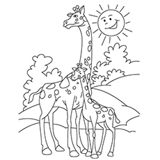 mother and baby giraffe bonding coloring pages