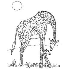 Coloring Pages of Mother And Calf Bonding