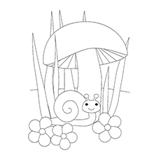 Coloring Page Of Snail Under Mushroom Printable