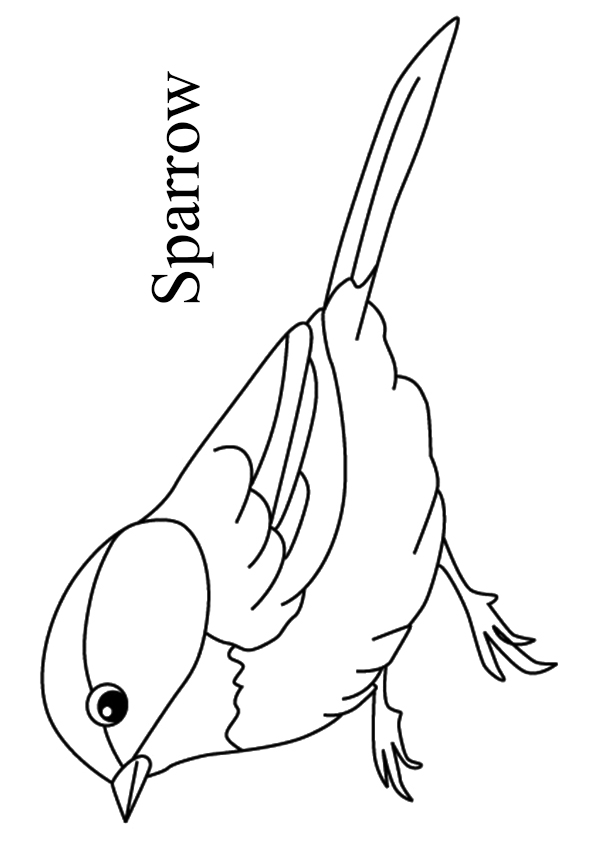 The-Sparrow